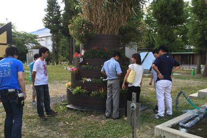 ロハスの花壇見学