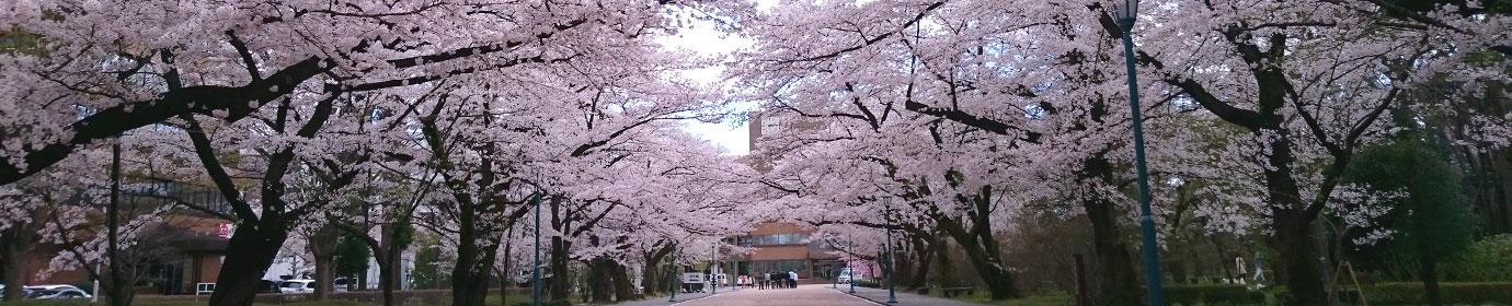 日本大学工学部 校友会